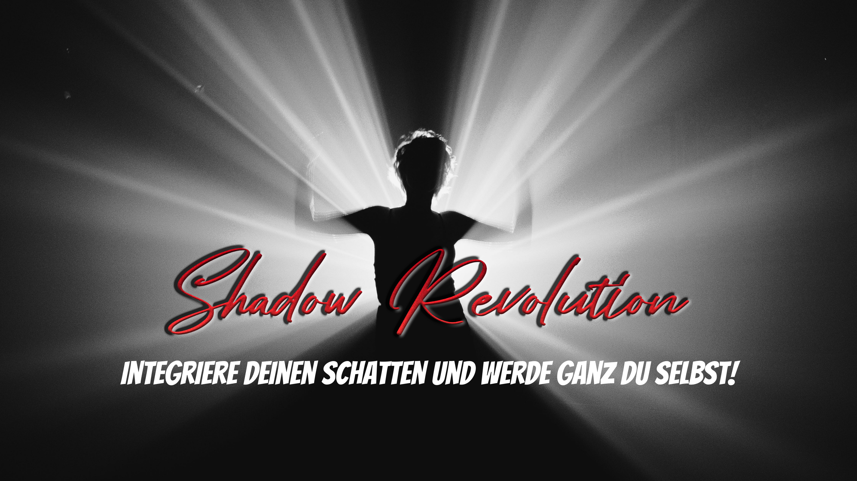 ShadowRevolutionGrafik